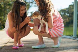 Twee meisjes met verzekere puppy in handen